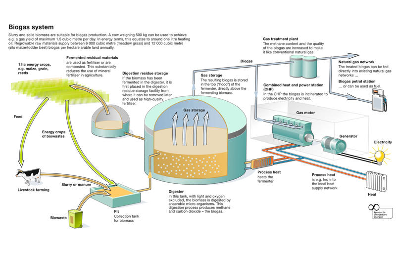 ... or liquid biomass which are used in the fermenter to produce biogas